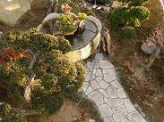 庭水盤.JPG